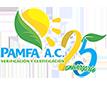 Verificación y Certificación Logo